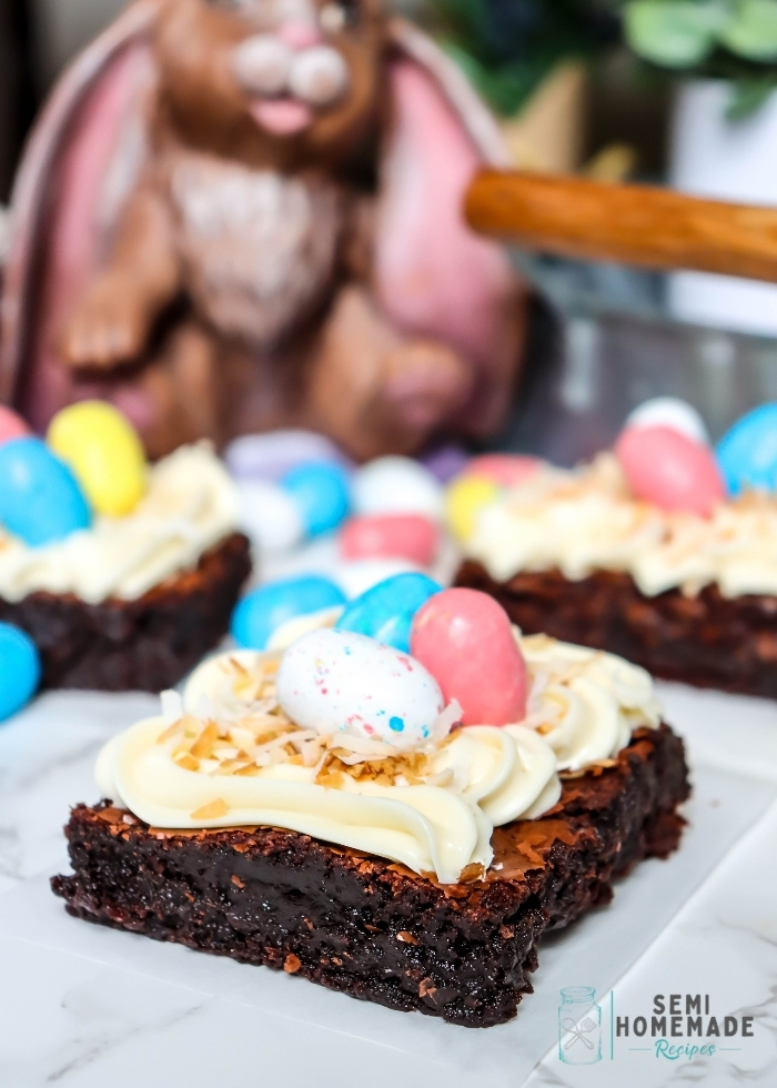 Bird Nest Easter Brownies - robin egg candies ontop of frosted brownie with toasted coconut under candy to look like a bird nest