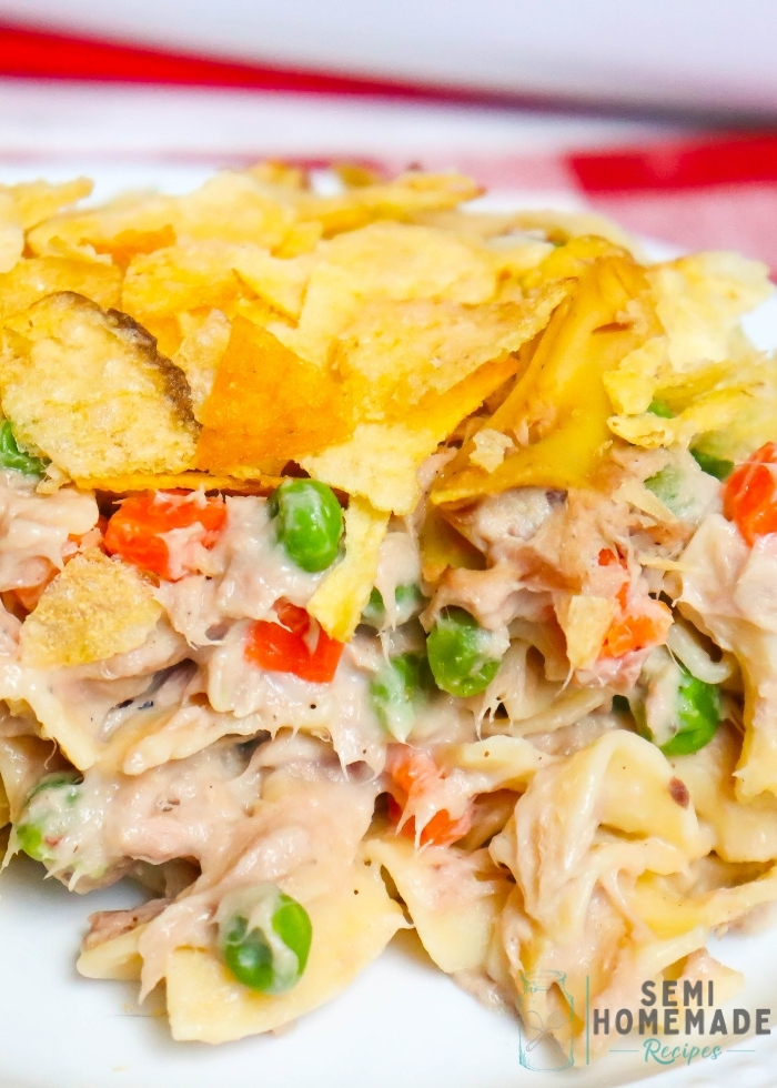 SERVING OF EASY TUNA NOODLE CASSEROLE ON A WHITE PLATE (2)